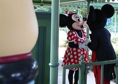 fantasy garden- mickey/ minnie/ pluto (alienalice) Tags: hkdl hkdisneyland duffy gelatoni tinkerbell mickey minnie donald daisy woody jessie