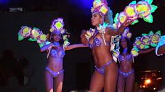 P9244728 (Art & Nice) Tags: brasil tropical olympus xz1 paris plume