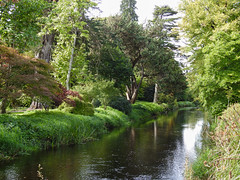 The River, Birr Castle Gardens, Ireland (uk_dreamer) Tags: nature natur water reflections reflection trees green birr ireland garden