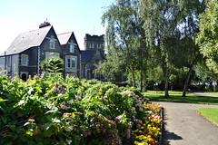 23viii2016 Waterloo Gardens 7 (garethedwards36) Tags: waterloo gardens park roath cardiff wales uk lumix