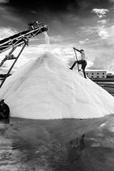 Le saline (dolcedgiorno) Tags: bw blackandwhite biancoenero 35mm14 35mm 6d trapani saline sicilia italy sicily salt saltworks
