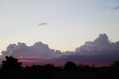 IMG_5264 (Anna Gurule) Tags: skycolors sky pinkclouds pinkskies colors artedgy annagurule annaortizgurule
