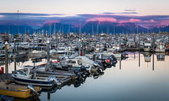 Sunset in Homer (mlhell) Tags: alaska animals boats clouds homer kachemakbay landscape marina nature seascape sunset