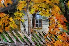 Abandoned  (in explore 28.09.16) (Kalev Vask.) Tags: digital kalevvask postproccessed dap estonia photomanipulation digiart photoart autumn explored explorer