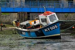 IMG_1983 (Leroy Wilson) Tags: fife eastneuk lowerlargo eile rubybay stmonans elienesslighthouse robinsoncrusoe juanfernandezisland pittenweem earlsferry scotland harbour boats lighthouse eos eos100d 70200mm