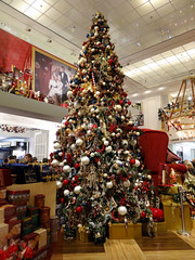 Weihnachtsbaum (Gertrud K.) Tags: christmas xmas weihnachten geotagged navidad nol kadewe geo:lat=5250189577355408 geo:lon=13341103792190552