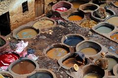 Fez (capiotti) Tags: men colors morocco fez maroc marruecos marrocos tannery