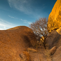 """Tree at Spitzkoppe Namibia • <a style=""""font-size:0.8em;"""" href=""""https://www.flickr.com/photos/21540187@N07/8291665255/"""" target=""""_blank"""">View on Flickr</a>"""