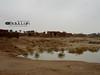 SAM_0503 (♥Aвđυlıɑн вιи ĩвŗαћɪ̇м ©) Tags: بيوت الطين الدوادمي