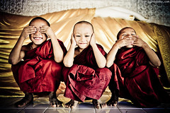 Three wise novices ( www.nikonbaby.com) Tags: cute by photography three nikon burma young used wise myanmar d800 2470mm novices mandalaydivision nikonbaby f28lens pyawbwe wwwnikonbabycom sankyaung shanpwequarter