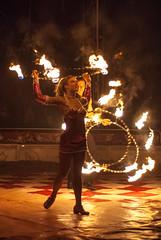 (Nuno Luz) Tags: horse circo circus lisboa lion lions cavalo circocardinali circocardinalli