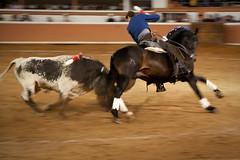 Provincia Juriquilla_2011 - 15 (Eduardo de la Garma de la Rosa) Tags: canon toros corrida lida bestia 2011 rejoneador pablohermosodemendoza eduardodelagarma mamonet