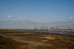 Save Wular Lake of Kashmir India (PKG Photography) Tags: lake jammuandkashmir wular kashmirindia saveenvironment kashmirtourism wularlake kashmirwallpapers pkgphotography gettyimagesindiaq4