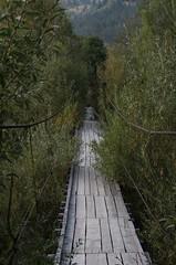 Footbridge Crossing Ru Moldova (Moldova River) - Cmpulung Moldovenesc, Jud. Suceava, Romania (Wayne W G) Tags: europe romania easterneurope campulungmoldovanesc campulung suceava cmpulungmoldovenesc geo:country=romania