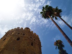 Andalucian Sunshine (lindscatt) Tags: trees sky sun tower sunshine century palms gold sevilla spain guadalquivir bluesky seville palmtrees spanish andalusia 13th watchtower almohad