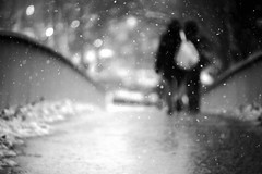 The blurry tenderness (BW) (Dlirante bestiole [la posie des goupils]) Tags: people bw snow blur paris france fence blackwhite noiretblanc boulogne snowing loose priphrique headshoulders virela gardela virela2 gardela2 virela3 virela4 virela5 virela6 virela7 virela8 virela9 virela10 virela11 prifrique