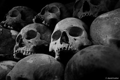 5000 (davidkoiter) Tags: bw white david black field canon eos skull cambodia killing human 7d april l series phnompenh bone desaturated f4 1740 remain 2012 khmerrouge polpot choeungek f4l koiter davidkoiter