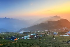 Foggy tea field @ (Vincent_Ting) Tags: sunset sky clouds taiwan  formosa  jiayi startrails   seaofclouds alisan    teafield