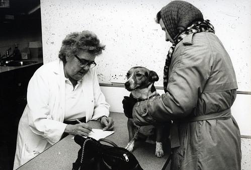 Rex at the PDSA 1990s