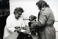 Image titled Rex at the PDSA 1990s