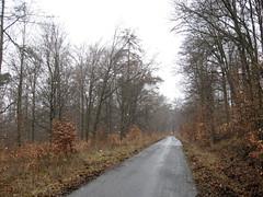 2013 Germany // Hessenweg 1 // (maerzbecher-Deutschland zu Fuss) Tags: trekking germany deutschland hessen hiking natur trail taunus wandern fuss zu wanderweg fus wanderwege 2013 fernwanderweg weitwanderweg hessenweg maerzbecher hessenweg1 deutschlandzufus deutschlandzufuss