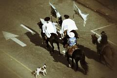 Ladran Sancho.. (gustavobarral) Tags: uruguay caballos calle patria gaucho desfilando