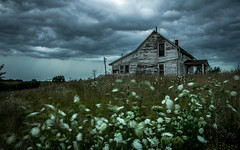 Evening Storm (Rodney Harvey) Tags: abandoned house missouri storm thunder queen annes lace wind