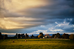 Farm on a Hill in Kangaroo Ground (gazrad) Tags: agriculture building cloud colour country dawn dusk evening farm field grass green horizontal horse kangarooground landscape morning nobody paddock pasture rural sunrise sunset victoria yarravalley