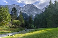 _DSC8411_n (fototaza) Tags: top mountain hiking trail zakopane stryska valley tatry