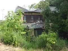 Collapsing house (Stop carbon pollution) Tags: japan  honshuu  okayamaken  naoshima  setouchiarttriennale
