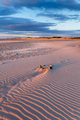 Alnmouth Sunrise (Reid.J) Tags: alnmouth northumberland northumbria sand patterns textures wind estury sunrise blue orange rock dunes coast beach england sony nex6 sigma 19mm golden hour hitech formatt filter filters