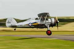 FL_16-6741-Edit.jpg (eirik75) Tags: flyinglegends2016 gladiator