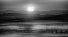 sunrise in b&w (Florian Grundstein) Tags: sunset sunrise bw blackandwhite monochrome landscape trees silhouette nikon dx d7100 sigma 150600 contemporary spectacular misty foggy morning upperpalatinate bavaria germany nature natural layers 5