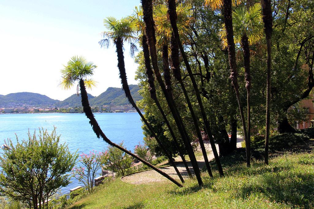 Awesome kilometro della conoscenza tags como giardini - Foto giardini ville ...