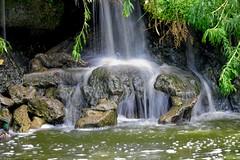 Cascade (Mystycat =^..^=) Tags: cascade eau parcbordelais france gironde aquitaine bordeaux rochers vgtation