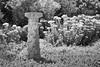 Sundial in the Garden (repete7) Tags: christiansburg virginia unitedstates us blackandwhite bw sundial garden usa montgomerycova montgomerymuseumandlewismillerregionalartcenter museum niksilverefexpro canon canon70d canon1585