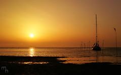 Homecoming (lichtspuren) Tags: sunset sonnenuntergang colours farben golden boat tideland wattenmeer summertime sommer canon eos 20d