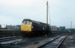British Rail Class 25 - 25129 (dgh2222) Tags: britsih rail class 25 25129 northwich cheshire mpd loco shed br blue