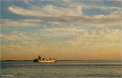 Golden Ship (Hindrik S) Tags: gold ship skip schip goud westerschelde schelde zeeland nederland noordzee evening sunset softcolor tones sonyphotographing sony sonyalpha tamron tamronaf16300mmf3563dillvcpzdmacrob016 tamron16300 16300 netherlands zonsondergang kust coast