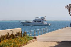IMG_2977_Hurghada 2016 the best of (Adam Is A D.j.) Tags: wismec vape hurghada egypt red sea mahmya desert rose resorts travel beach sun nature canon 5d mark iii 700d