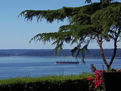 View from Seahurst, Burien, Washington **EXPLORED** (teresue) Tags: 2016 wa washington seattle burien seahurst pugetsound shp containership marine geranium