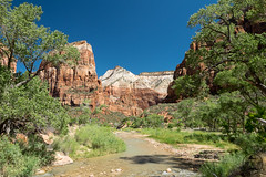 Zion_NP (Christoph Lindemann) Tags: zion national park mountains tree river virgin
