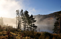 Misty Morning Lakeland (wilkie,j ( says NO to badger cull :() Tags: uk trees winter mist mountains water fog clouds landscape countryside nikon december day lakes lakedistrict cumbria mornings nationalparks nationaltrust thirlmere scenicwater sceniclandscape
