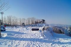 Winter wonderland at Hyundai Sungwoo Resort, South Korea (UweBKK (α 77 on )) Tags: mountain snow ski ice sport day sony south korea resort clear alpha dslr hyundai 550 wonju thegalaxy gangwon sungwoo pwwinter