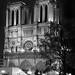 Cathédrale Notre-Dame de Paris_2