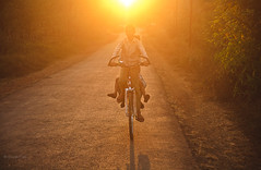 (Gaurav_Patil) Tags: road morning boy sun sunlight kids warm ride cycle flare pleasant konkan ratnagiri bicy