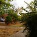 31 augustus 2012 Vakantie 2012 Minder weer Rovinj 35