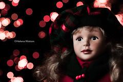 Happy Holidays (H e l l y) Tags: christmas uk red england face liverpool festive season happy doll december berries bokeh britain happyholidays merrychristmas tartan 2012 helly canon100mmmacro helenawatson