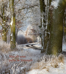 The Path (Collin Key) Tags: trees winter light germany frost path tranquility merrychristmas deu lepetitprince happynewyear schleswigholstein tistheseason photomix 2013 thankyoutoallmyfriends idream tornesch fantasticnature collinkey imagesforthelittleprince redmatrix oracope bestofshining shiningexcellence creativephotocafe