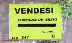 2012 Vendesi (Roma ieri, Roma oggi di Alvaro de Alvariis) Tags: italy rome roma fontanaditrevi visualizzazioni viadellavatore romascomparsa nonrintracciabili viainarcione fotoalvarodealvariis vendesifontanaditrevi lavatorderpapa